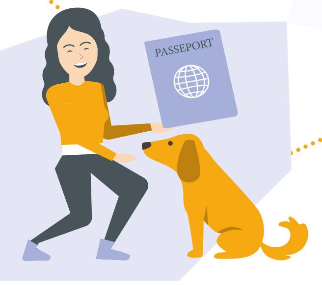 Image passeport du chien